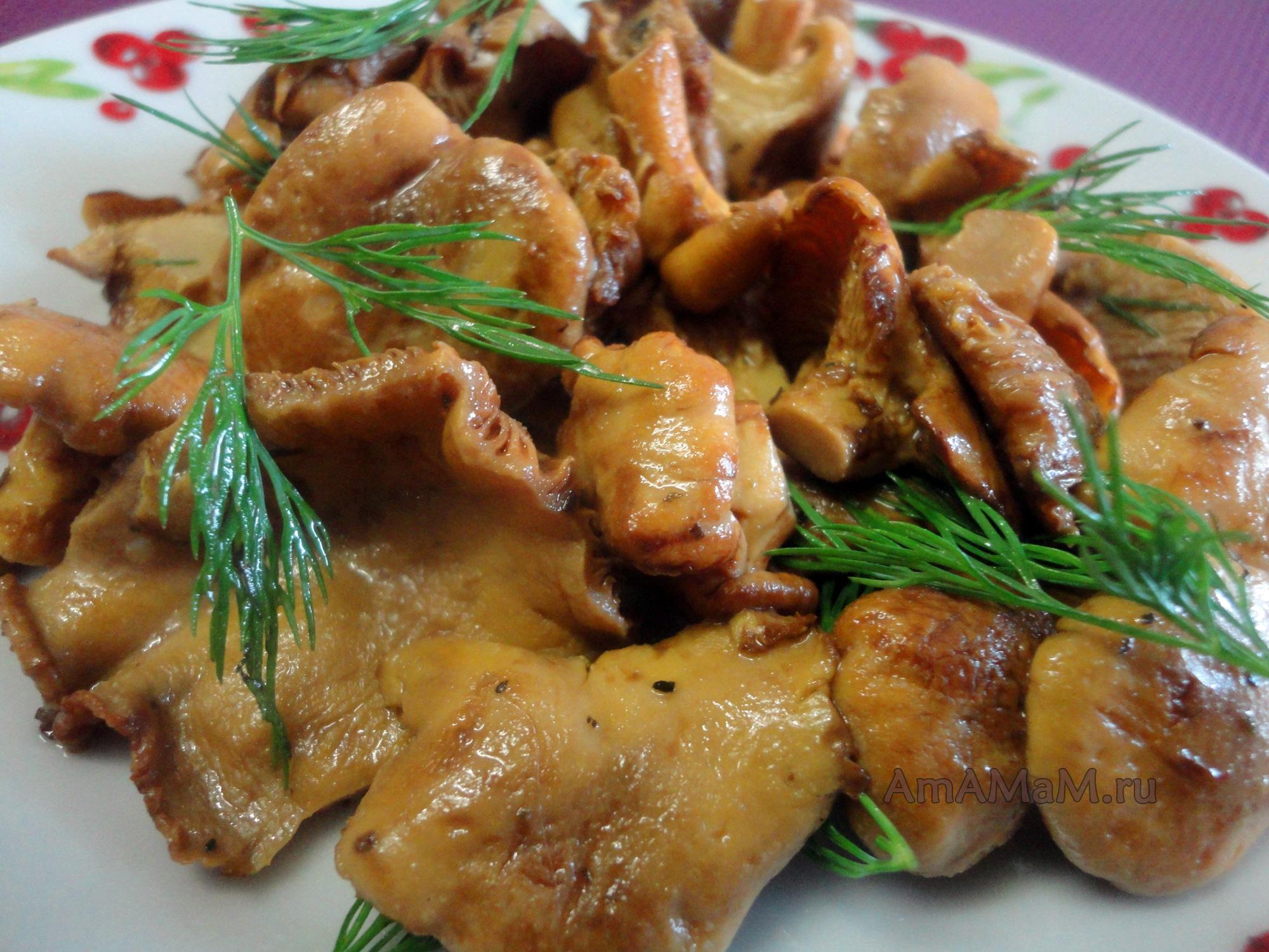 как приготовить грибы лисички