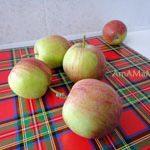 Яблоки натуральные консервированные