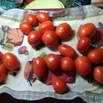 Заготовка помидоров на зиму - рецепты