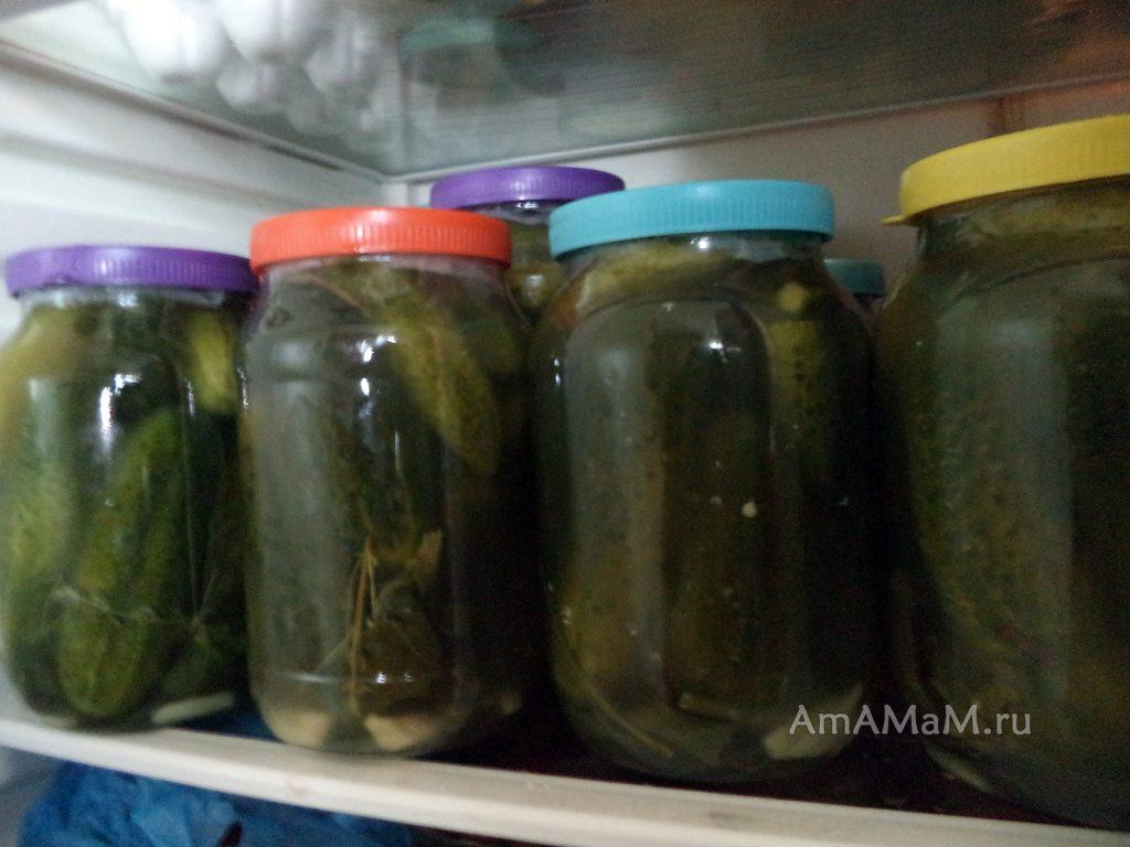 Хранение консервированных соленых огурцов