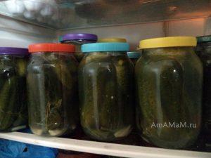 Соленые вкусные огурцы на зиму - рецепт посола