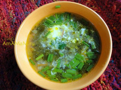 Фото щавелевого супа с консервированным щавелем