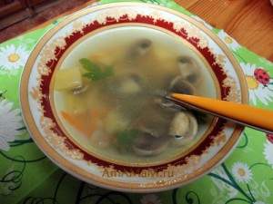 Шампиньоновый грибной суп - фото и рецепт простого первого блюда