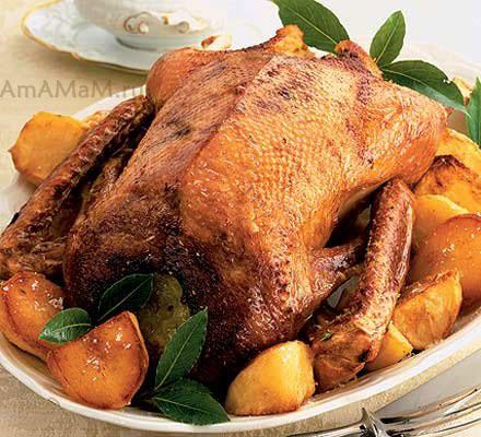 Рецепты приготовления гуся и фото