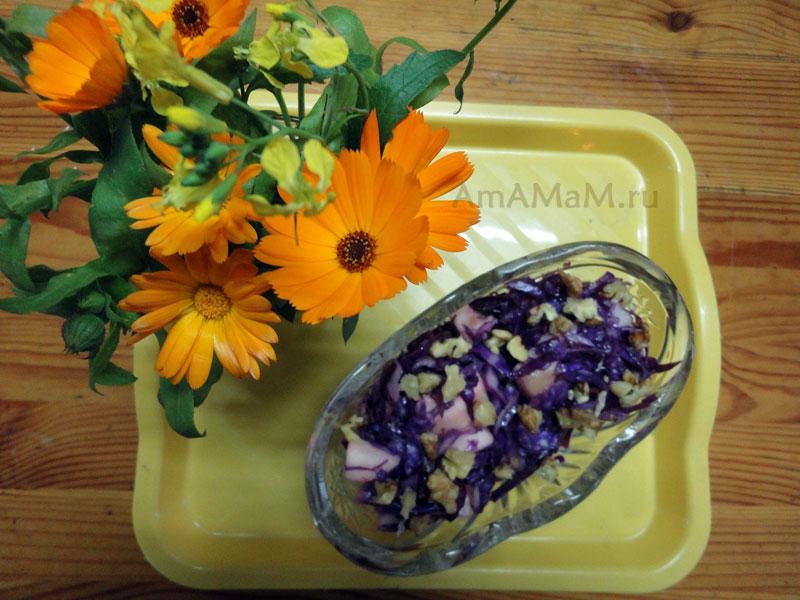 рецепты салатов из краснокочанной капусты с фото