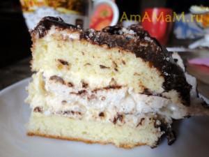 Как выглядит бисквитный торт - фото