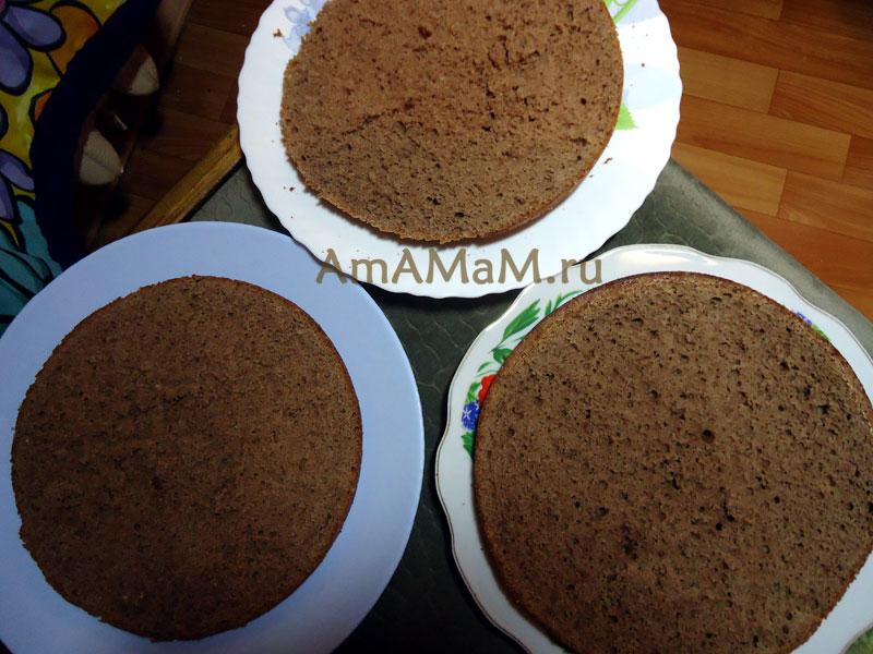 Подготовка бисквитных коржей к сборке торта - МК Шокладный торт