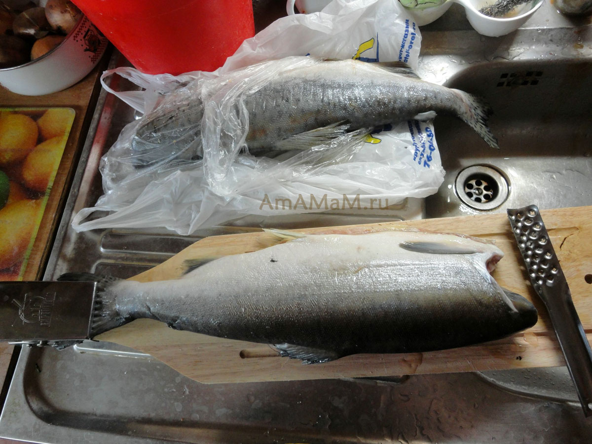 рецепт рыбного супа из головы красной рыбы