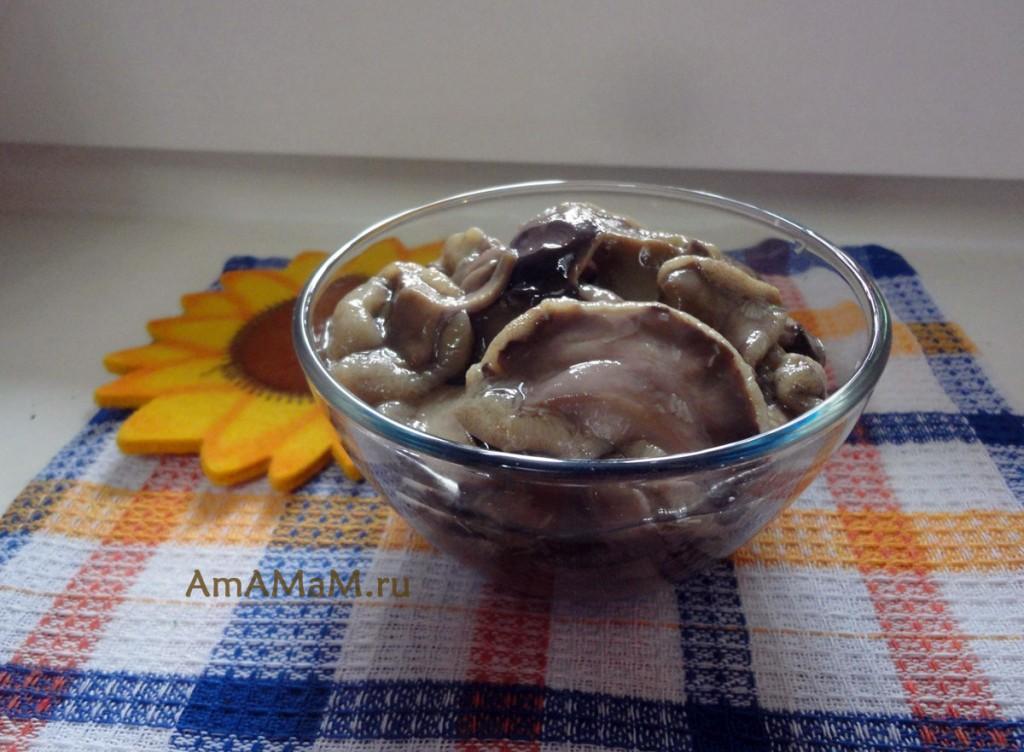 Как консервировать грибы на зиму - простой рецепт и фото грибов