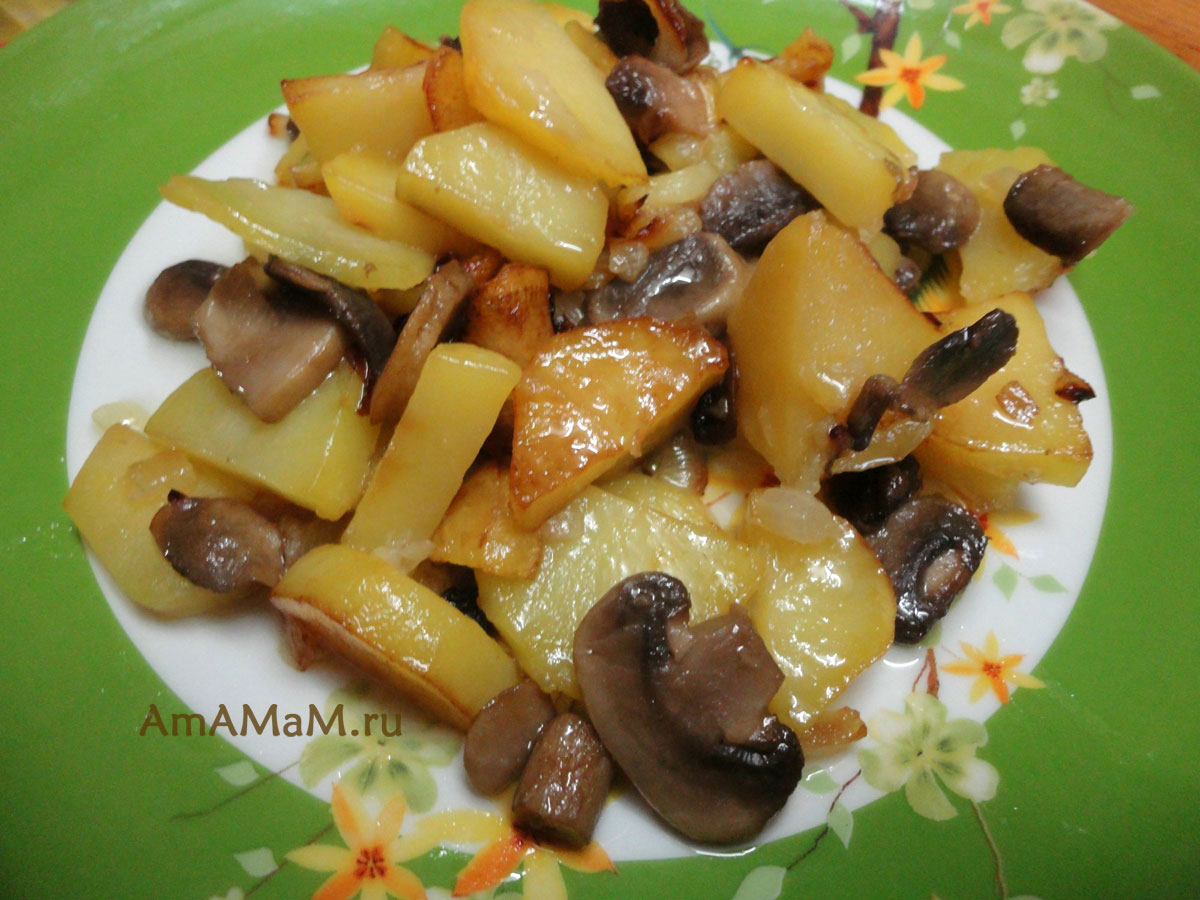 как пожарить грибы с картошкой на сковороде с луком пошаговый рецепт