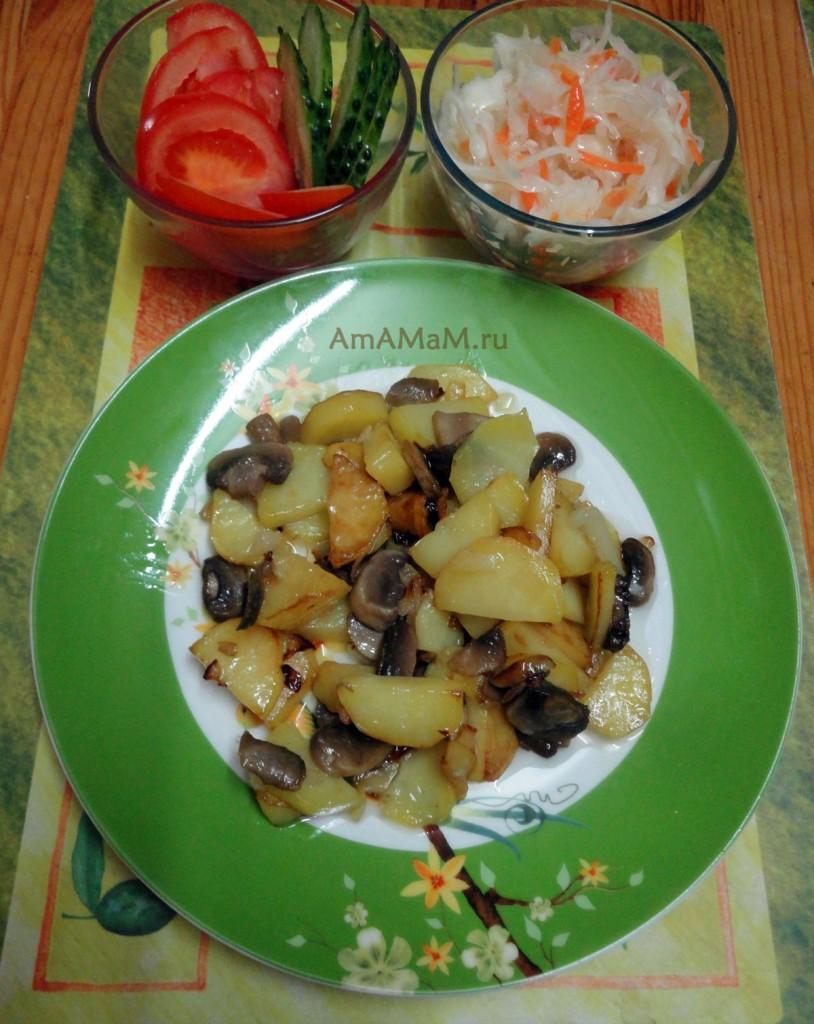 Вкусные рецепты из шампиньонов и картофеля