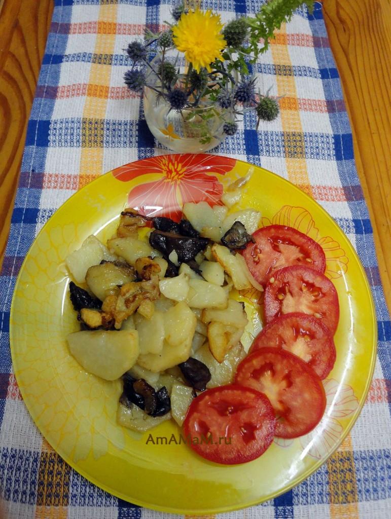 Рецепты грибных блюд из свинухов