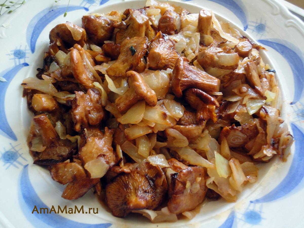 Лисички в сметане на сковороде рецепт пошагово