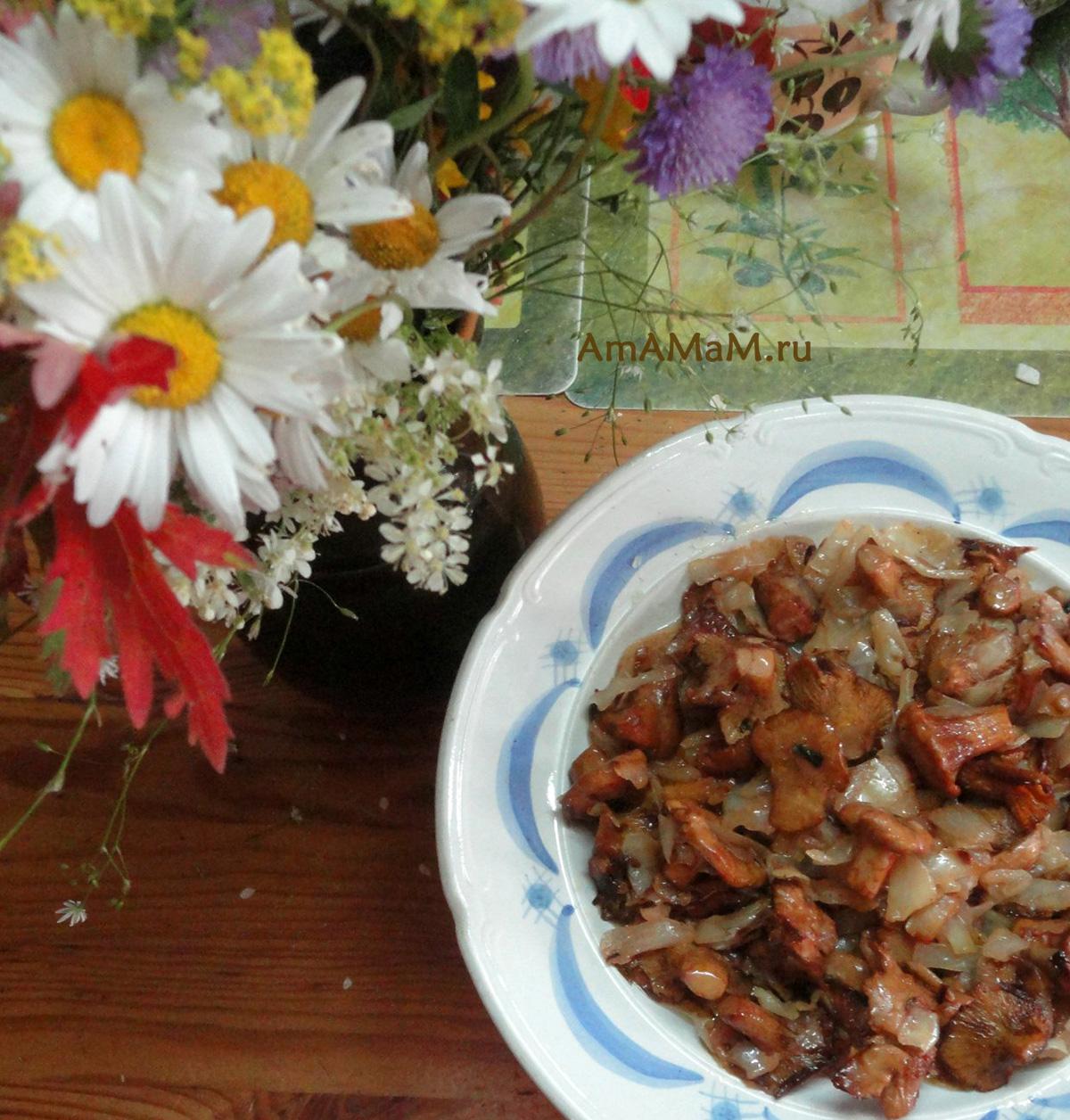 Рецепт жареных лисичек с капустой