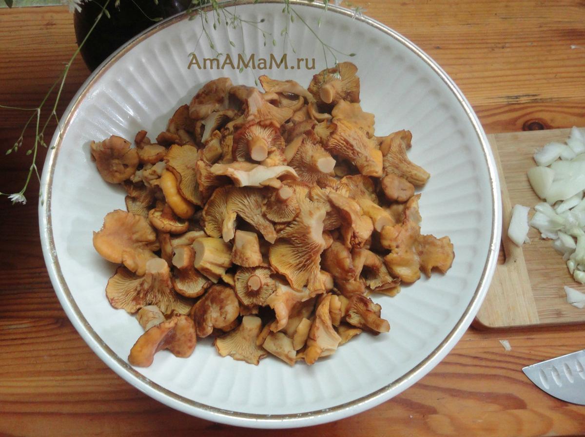Как вкусно приготовить жареные грибы лисички - фото-рецепты