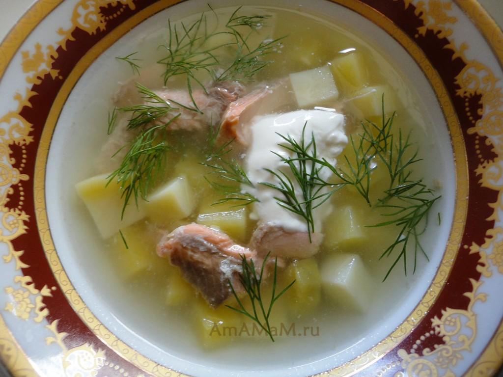 Рыбный суп из гольца - рецепт и фото