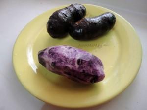 Фото черного картофеля - особый сорт картошки, фиолетовый внутри!