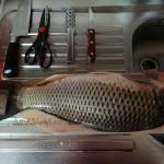 Как правильно чистить рыбу в домашних условиях - рецепт и фото