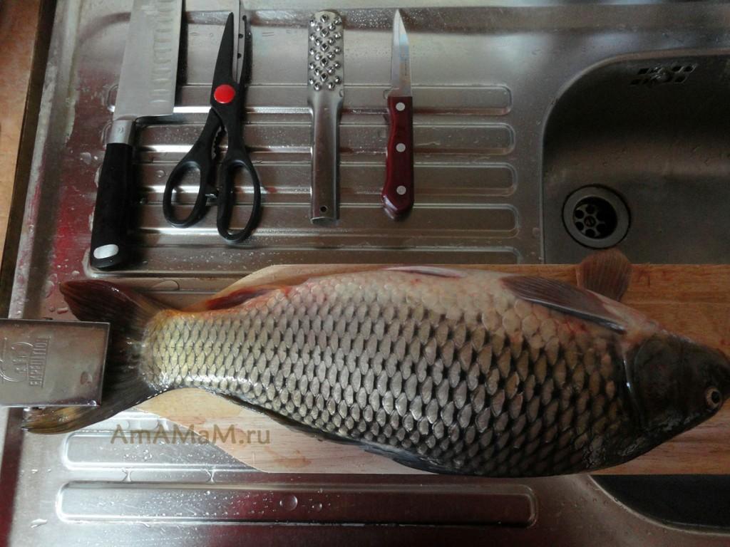 Как праивльно чистить рыбу и какие ножи и инструменты требуются для чистки рыбы
