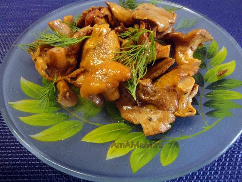 Рецепт лисичек на сухой сковороде