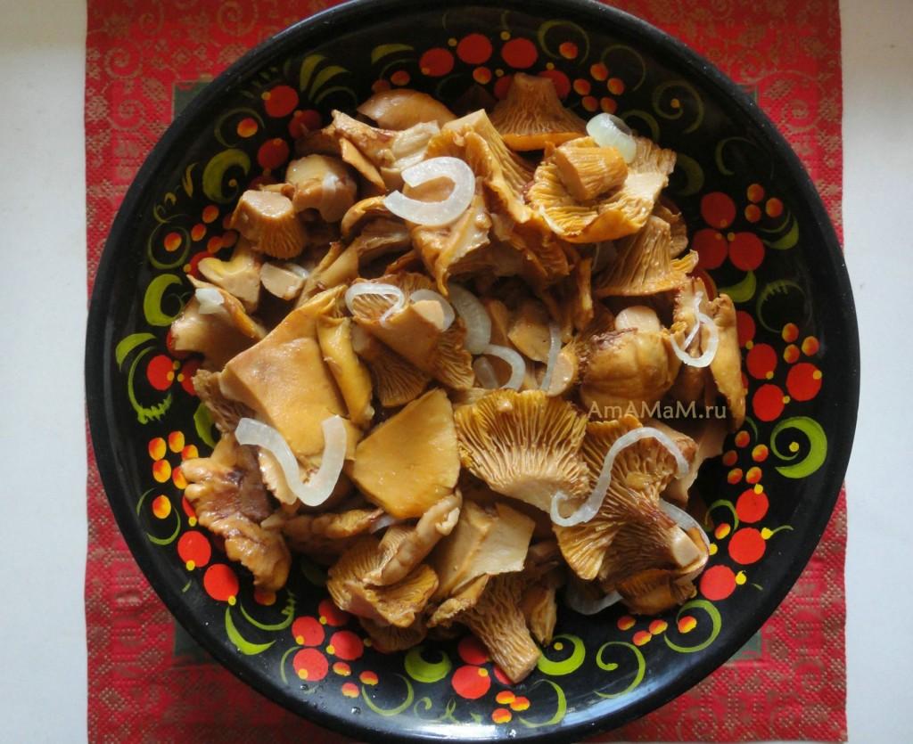 Рецепт жареных грибов