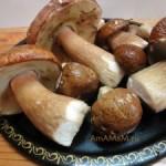 Белые грибы жареные
