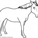 Рисунки лошадей - упрощенные, силуэты