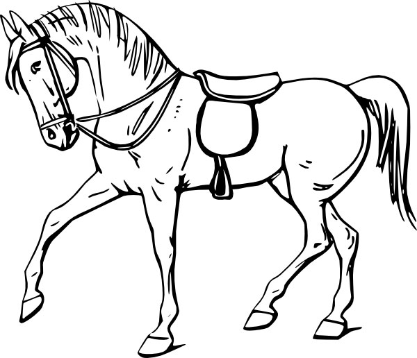 лошадь рисунок: