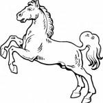 Рисунки с лошадьми. Лошадка на дыбах