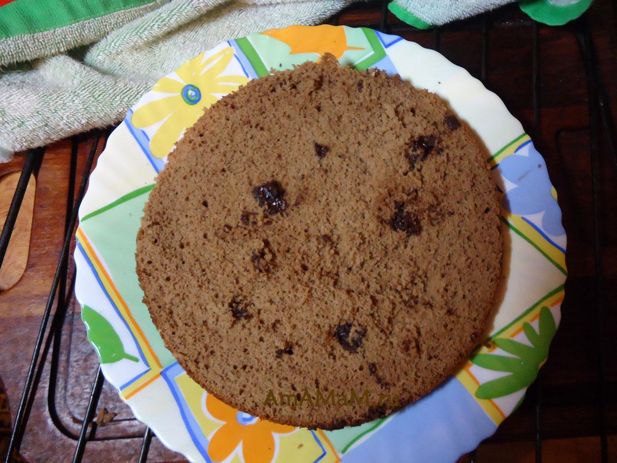 рецепт шоколадного торта с орехами с фото