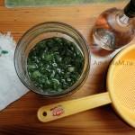 Рецепт сиропа алое