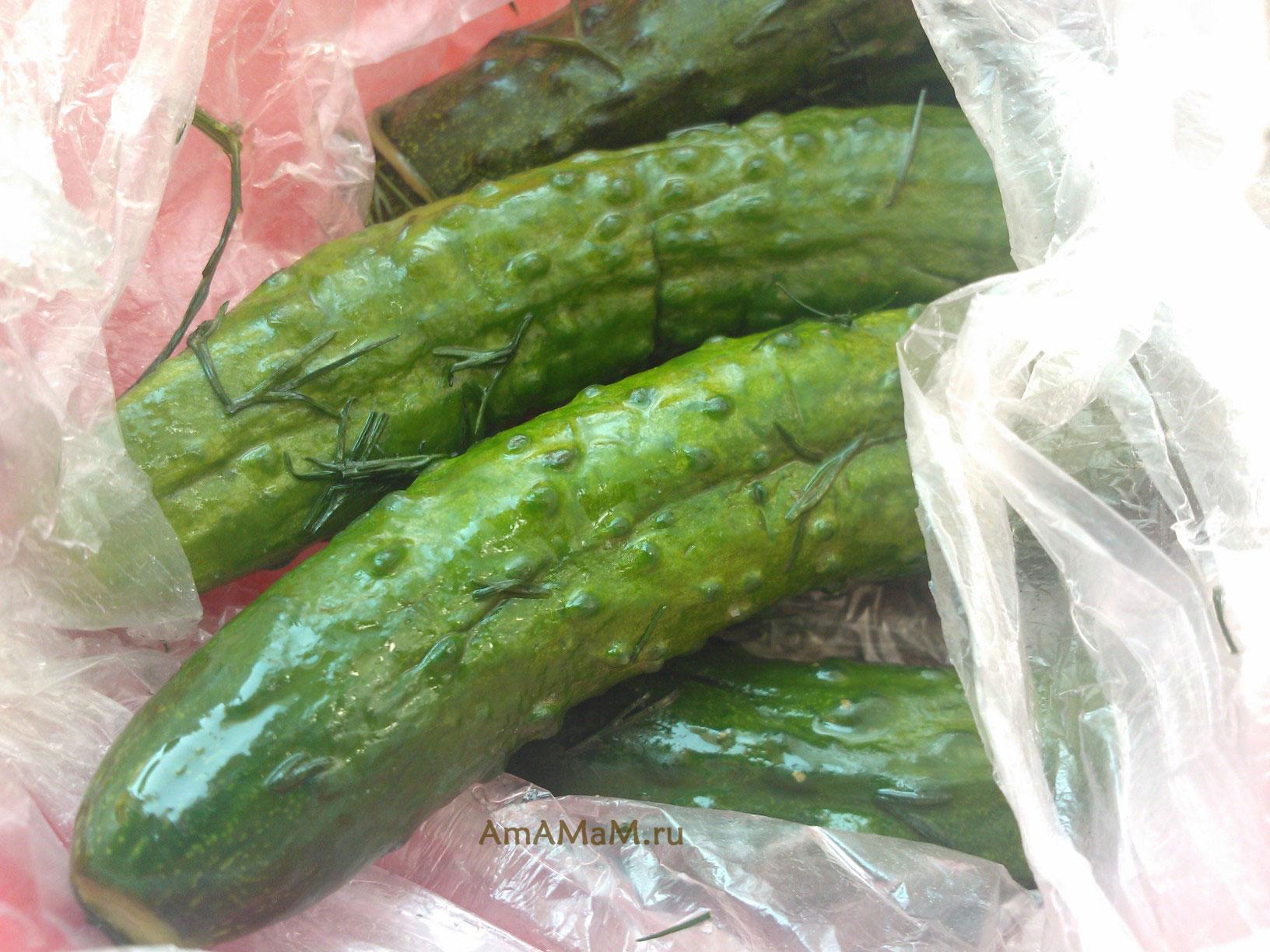 огурцы маринованные в пакете рецепт с фото