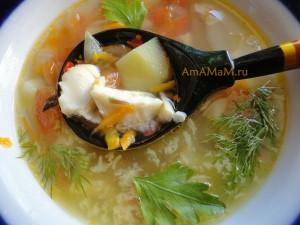 Супчик из морского окуня - рецепт