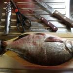 Как чистить речную рыбу перед приготовлением - фото и рецепт