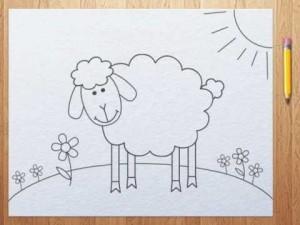Как нарисовать овечку для детской раскраски, овечка из мульфильма