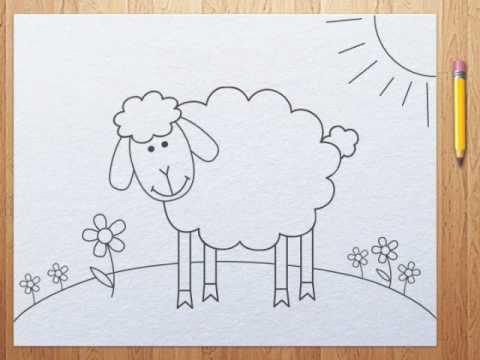 Картинки раскраски овечек