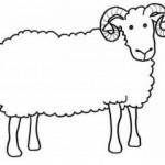 Трафарет для поделок (барашек, овечка)