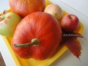 Фото оранжевой тыквы