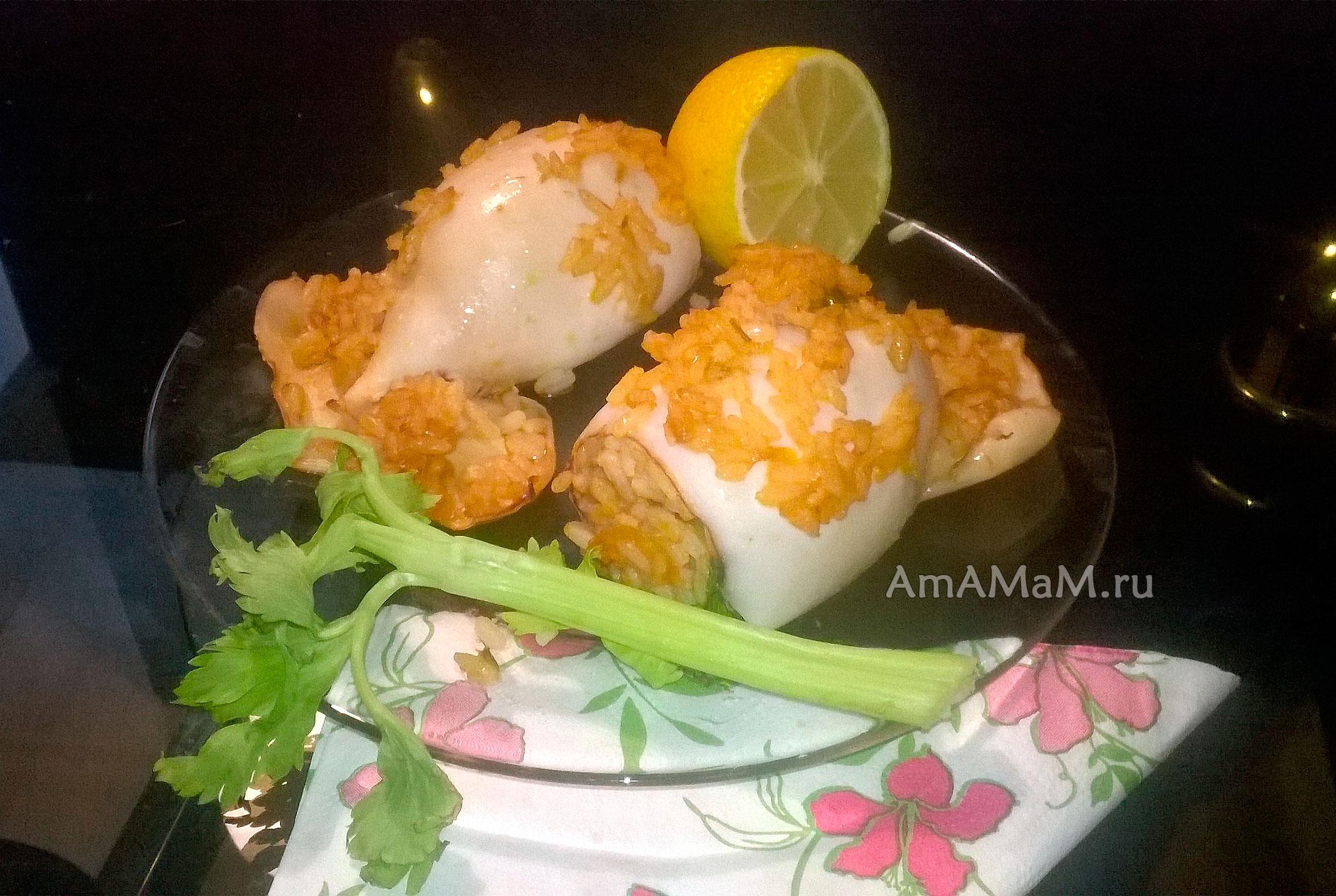 рецепт фаршированных кальмаров с рисом