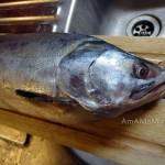 Как выглядит красная рыба горбуша - фото и рецепт приготовления