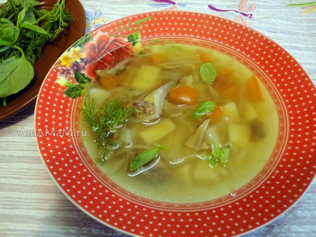 Классическое русское блюдо - суп щи