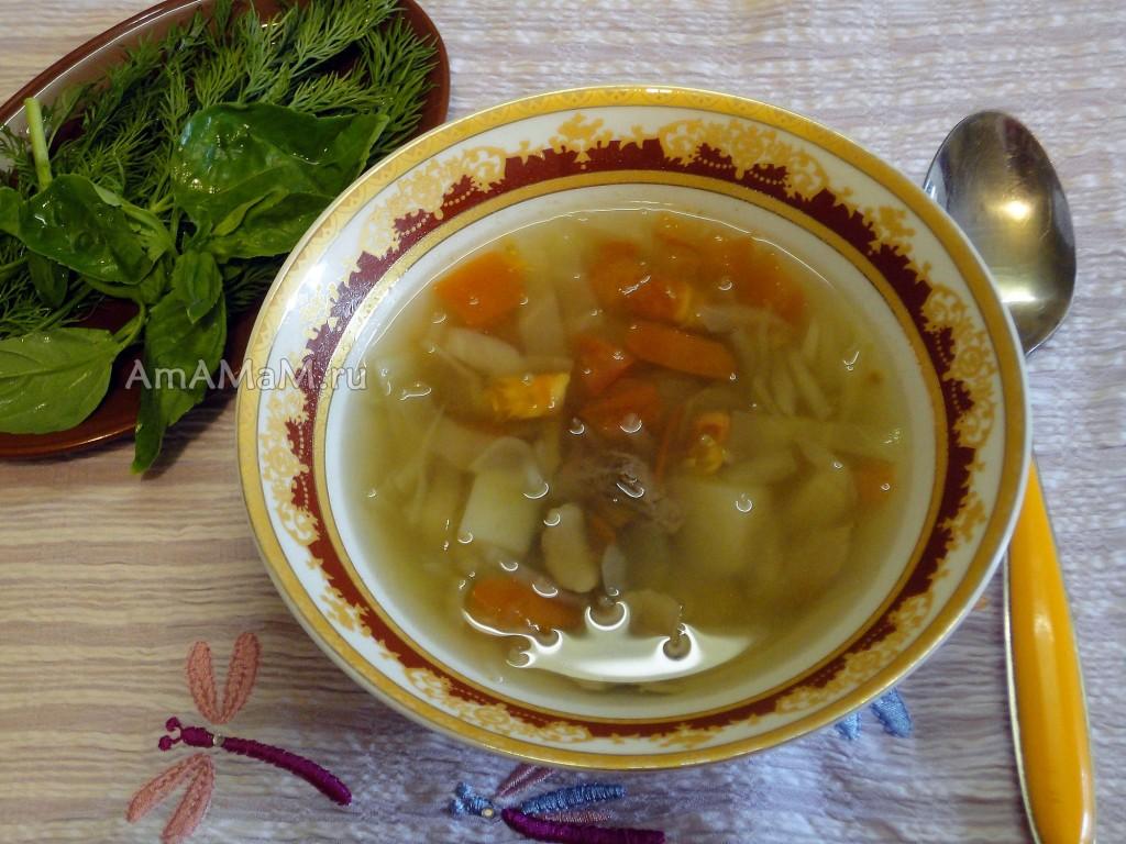 Рецепт вкусного супа - щи из свежей капусты с грибами