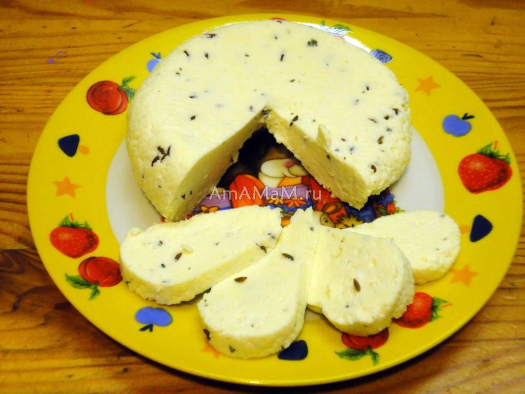 Ломтики домашнего сыра - фото