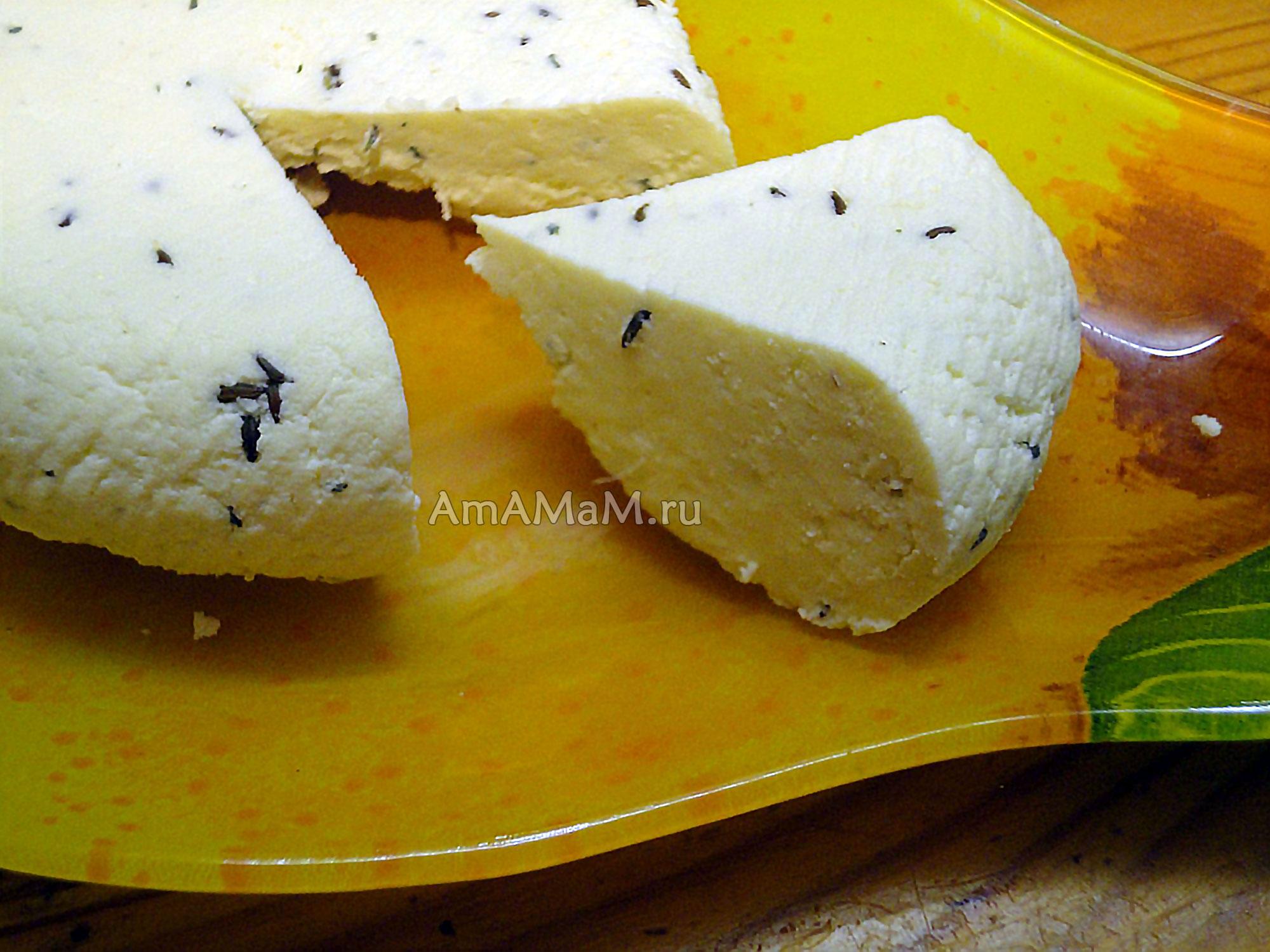 Пошаговый фото рецепт домашнего твердого сыра