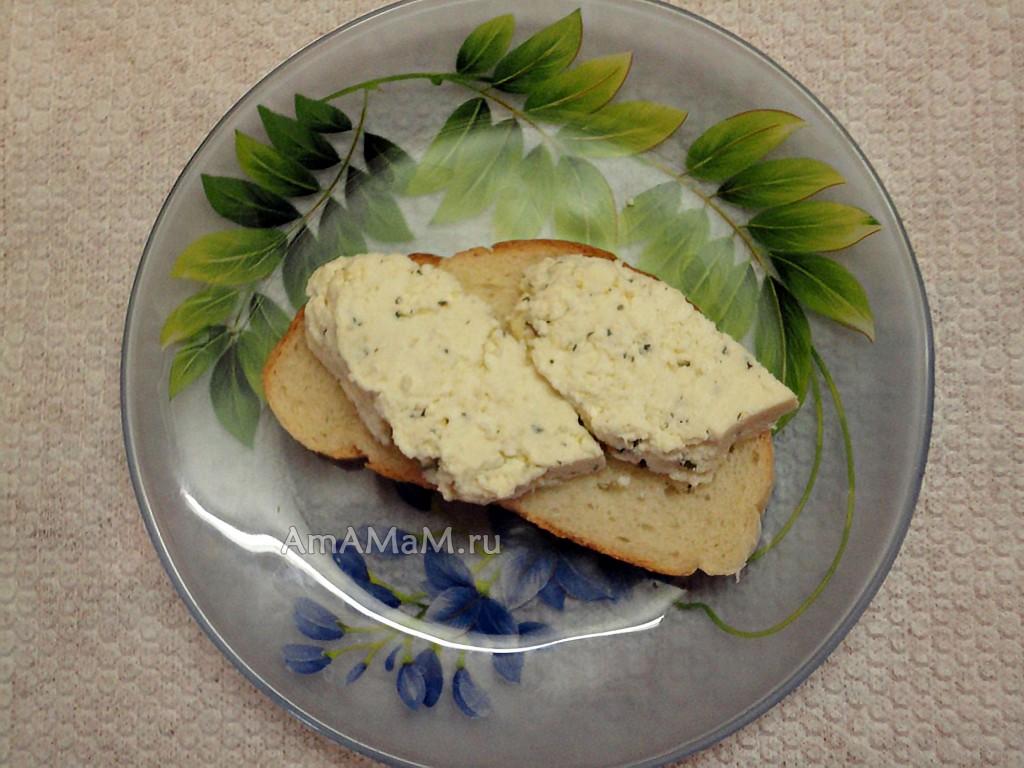 Сыр домашний рецепт из  молока
