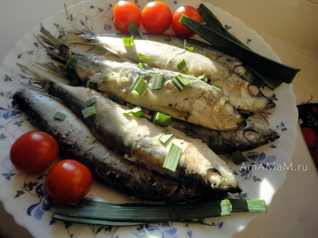 Рыба салака - рецепты