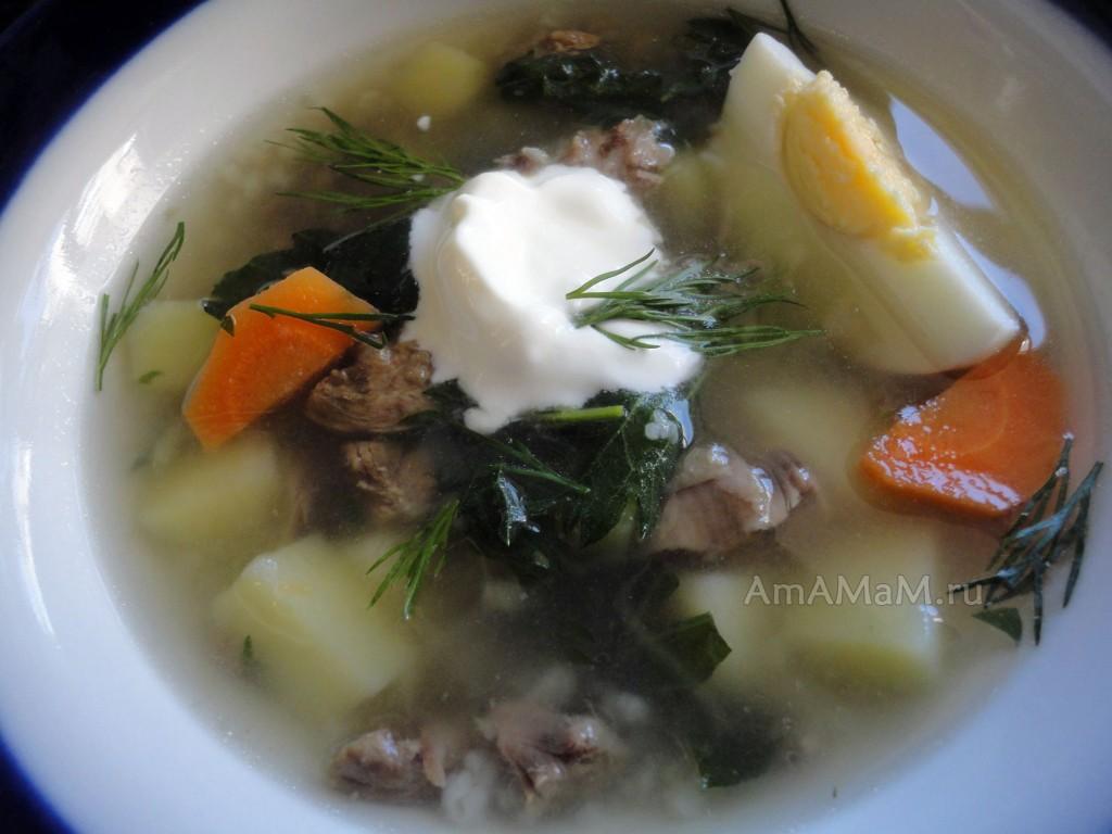 Рецепт зеленых щей из крапивы с фото