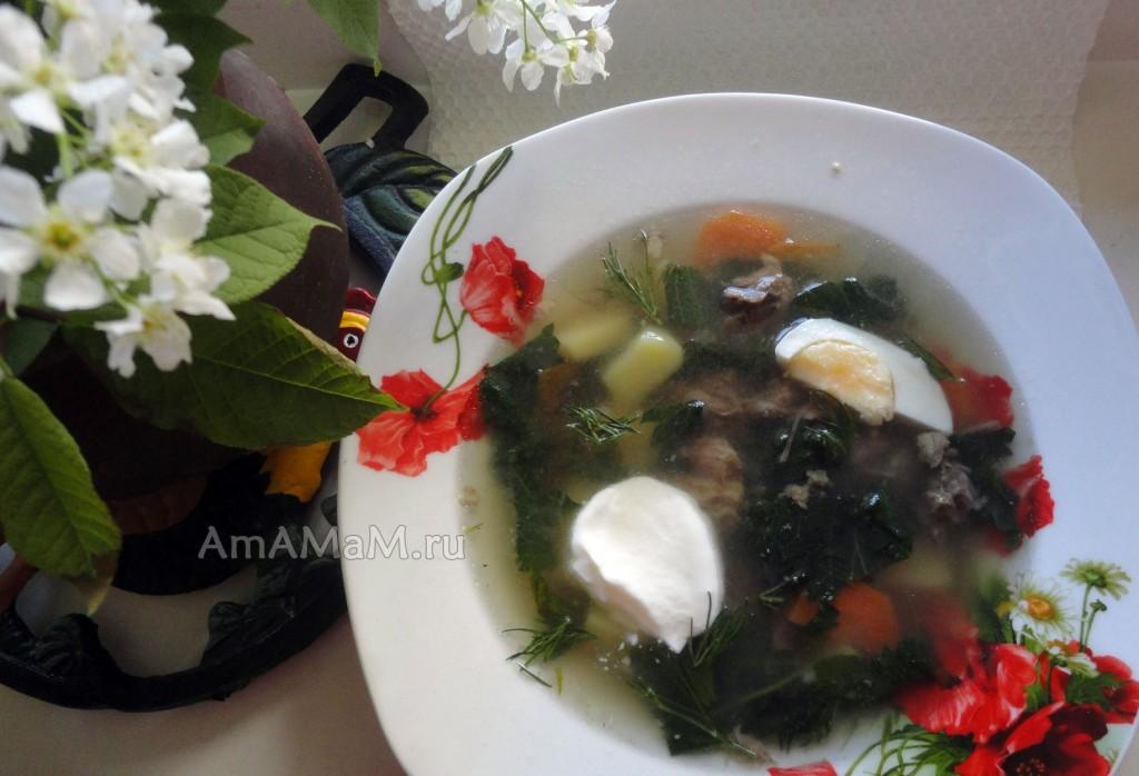 Приготовление щей из крапивы с рисом, картошкой и морковкой