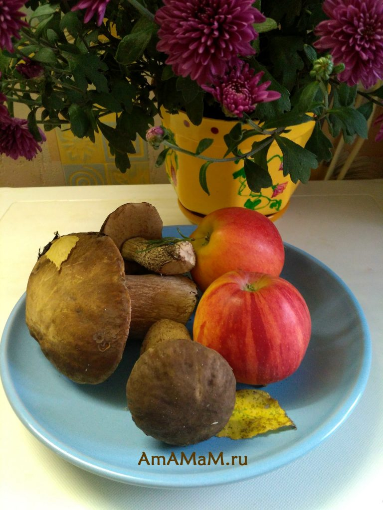 Лесные белые грибы - фото и рецепт жареных на зиму