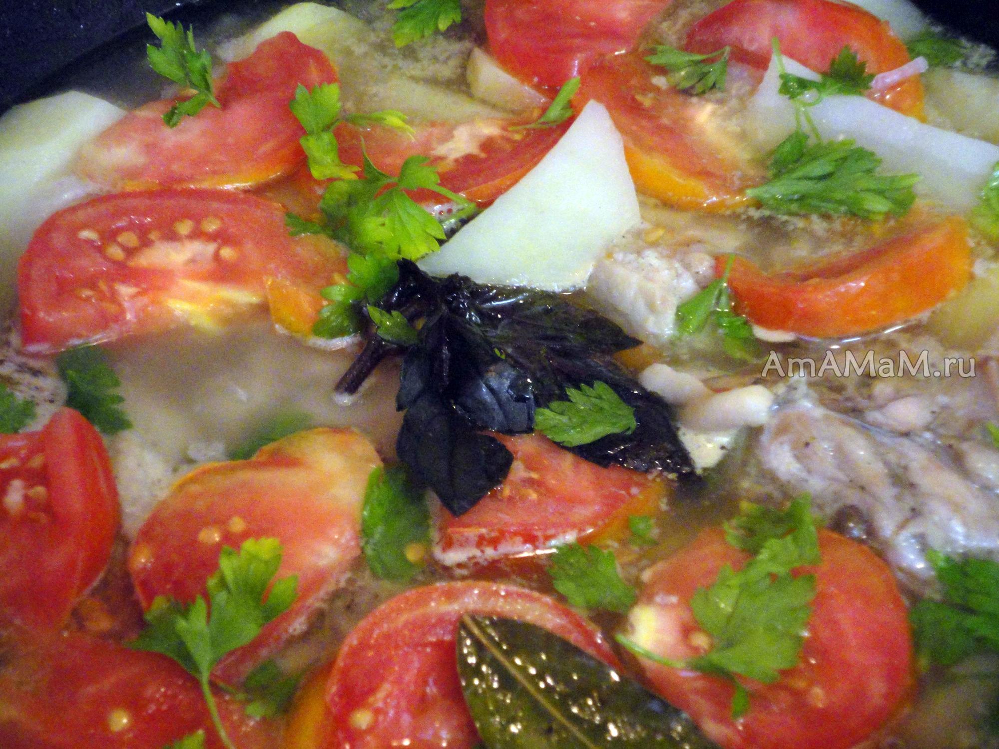 бедрышки с помидорами в духовке рецепт с фото